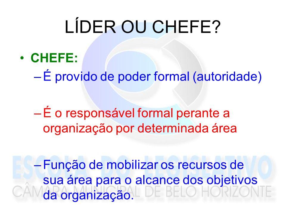 LÍDER OU CHEFE? CHEFE: –É provido de poder formal (autoridade) –É o responsável formal perante a organização por determinada área –Função de mobilizar
