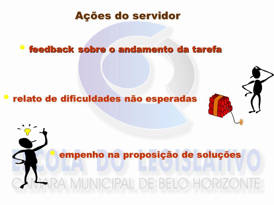 Ações do servidor feedback sobre o andamento da tarefa relato de dificuldades não esperadas empenho na proposição de soluções