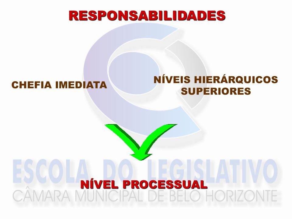 RESPONSABILIDADES CHEFIA IMEDIATA NÍVEIS HIERÁRQUICOS SUPERIORES NÍVEL PROCESSUAL