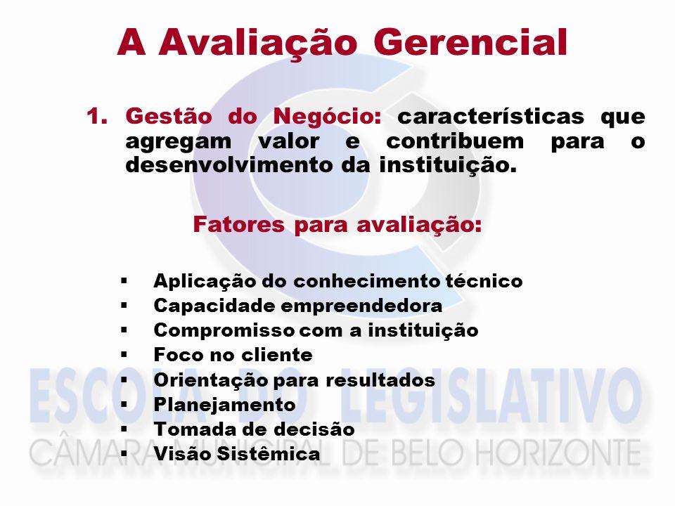 A Avaliação Gerencial 1.Gestão do Negócio: características que agregam valor e contribuem para o desenvolvimento da instituição. Fatores para avaliaçã