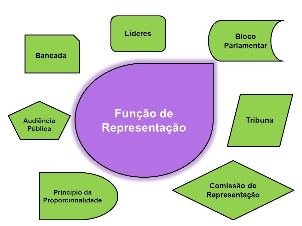 Função de Representação Comissão de Representação Princípio da Proporcionalidade Tribuna Líderes Audiência Pública Bancada Bloco Parlamentar