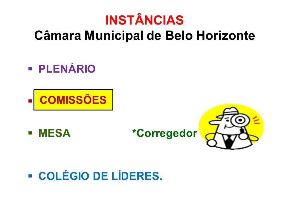 INSTÂNCIAS Câmara Municipal de Belo Horizonte PLENÁRIO C MESA *Corregedor COLÉGIO DE LÍDERES. COMISSÕES
