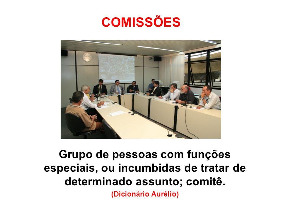 Grupo de pessoas com funções especiais, ou incumbidas de tratar de determinado assunto; comitê. (Dicionário Aurélio)