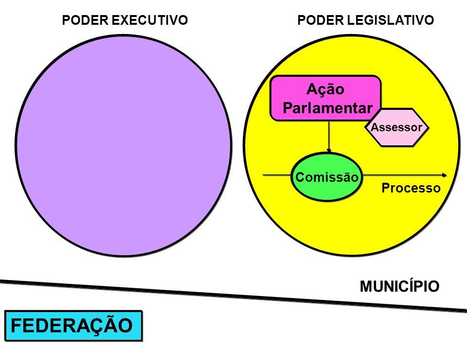 Processo PODER EXECUTIVOPODER LEGISLATIVO Ação Parlamentar Assessor MUNICÍPIO FEDERAÇÃO Comissão
