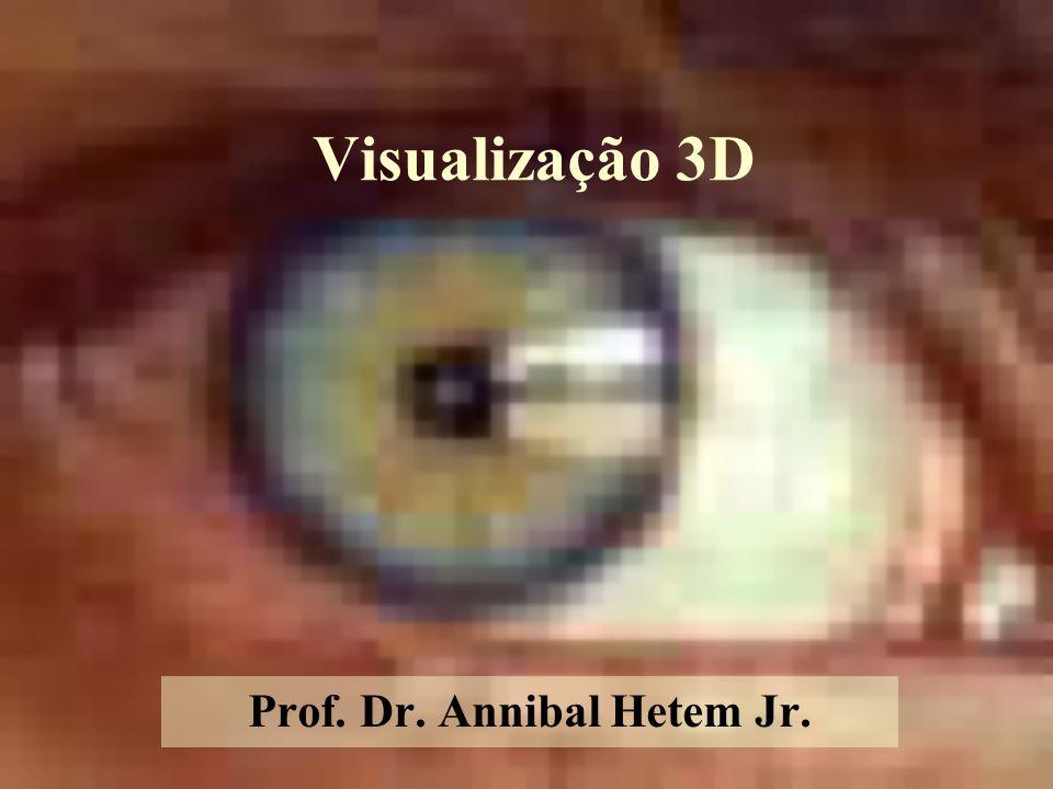 Visualização 3D Prof. Dr. Annibal Hetem Jr.