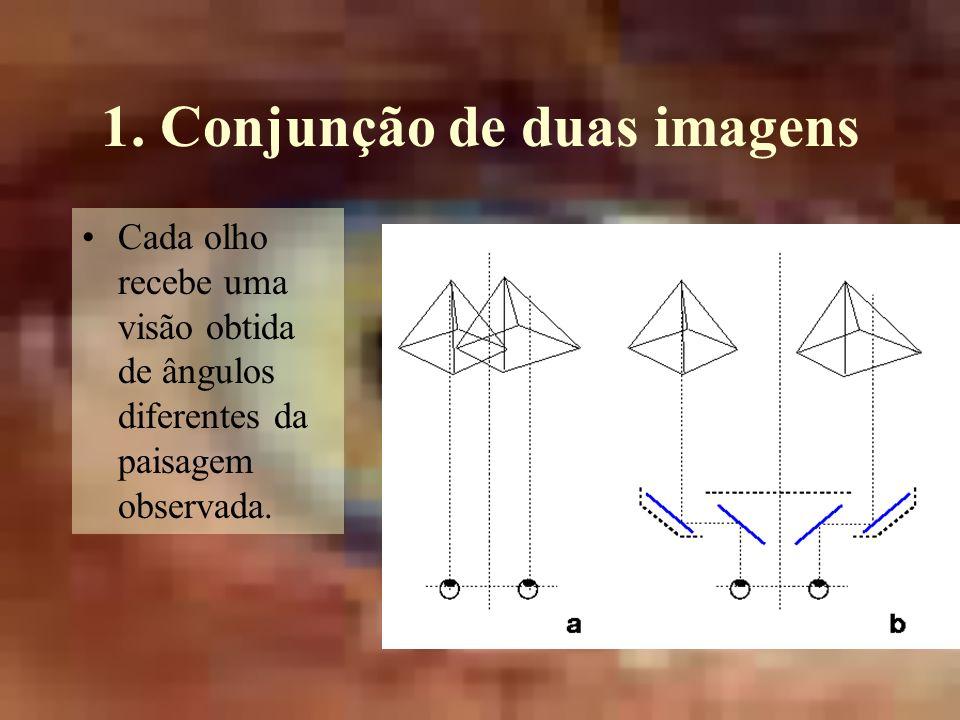 1. Conjunção de duas imagens Cada olho recebe uma visão obtida de ângulos diferentes da paisagem observada.