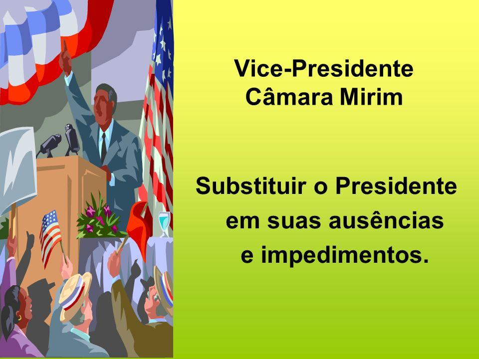 Secretário-Geral Câmara Mirim Auxiliar o Presidente na condução da reunião.