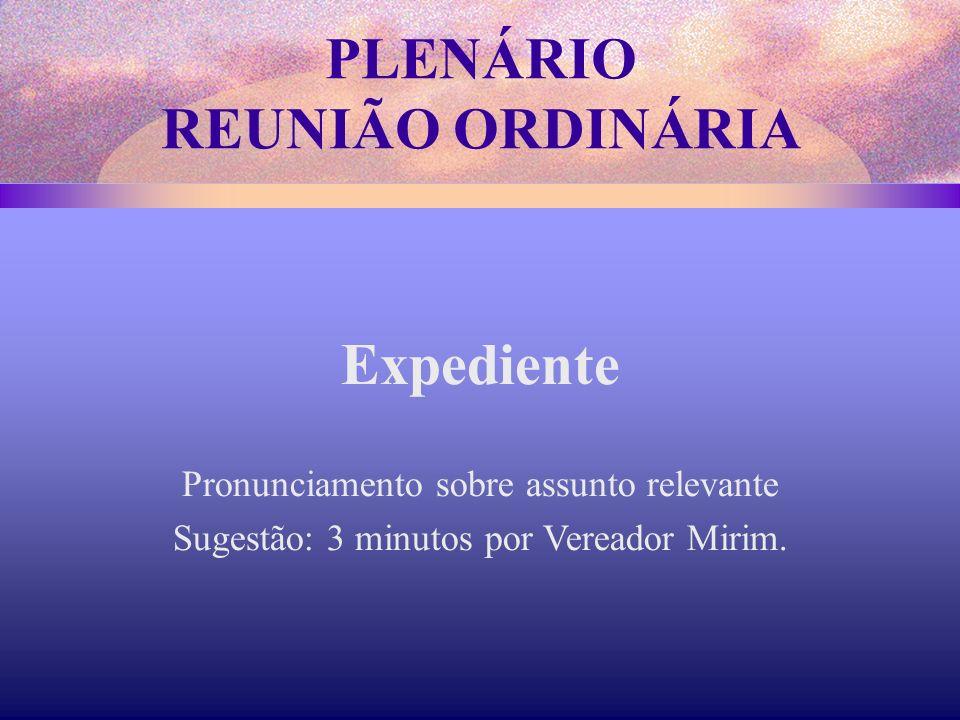 Expediente Pronunciamento sobre assunto relevante Sugestão: 3 minutos por Vereador Mirim. PLENÁRIO REUNIÃO ORDINÁRIA