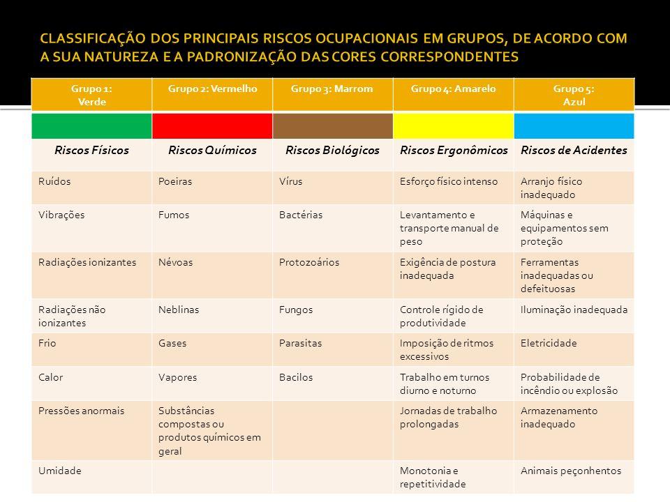 Grupo 1: Verde Grupo 2: VermelhoGrupo 3: MarromGrupo 4: AmareloGrupo 5: Azul Riscos FísicosRiscos QuímicosRiscos BiológicosRiscos ErgonômicosRiscos de