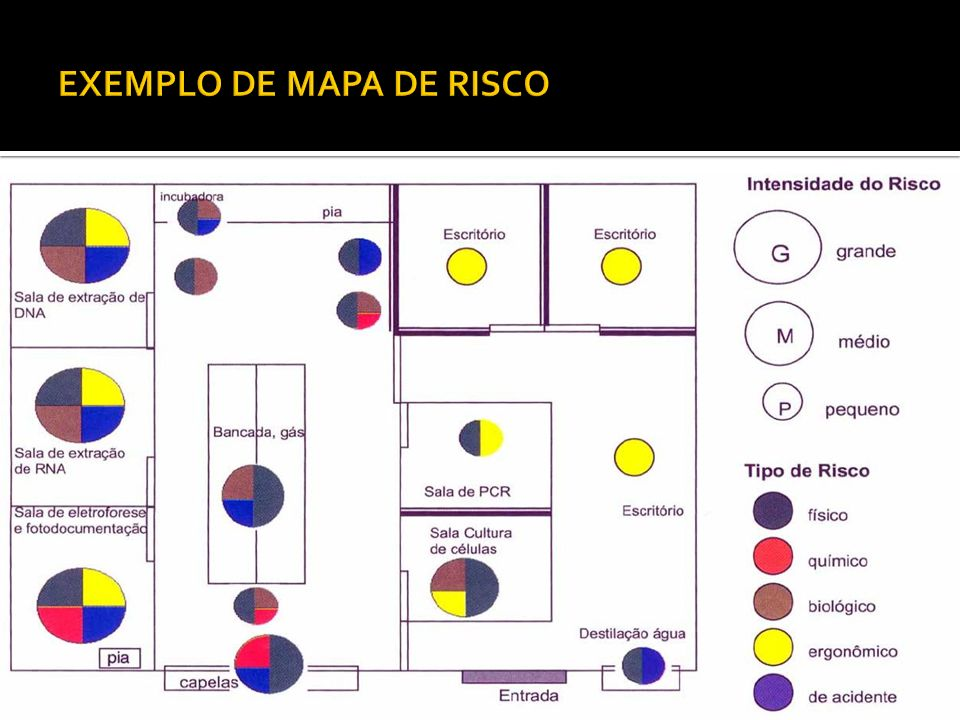 Nº de grupos:2 Identificação: Data, setor, nº de funcionários Descrição do setor: onde se encontra localizado, nº de funcionários de acordo com o cargo, rodízio, turnos...