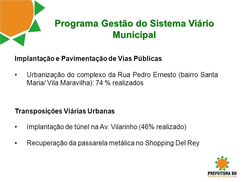 Programa Gestão do Sistema Viário Municipal Implantação e Pavimentação de Vias Públicas Urbanização do complexo da Rua Pedro Ernesto (bairro Santa Mar