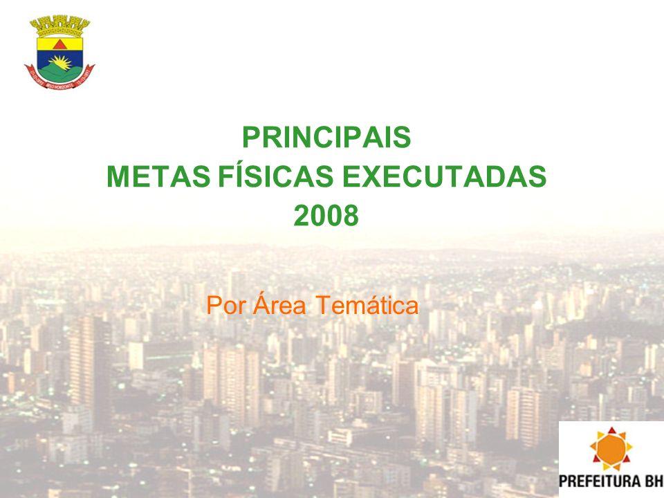 PRINCIPAIS METAS FÍSICAS EXECUTADAS 2008 Por Área Temática