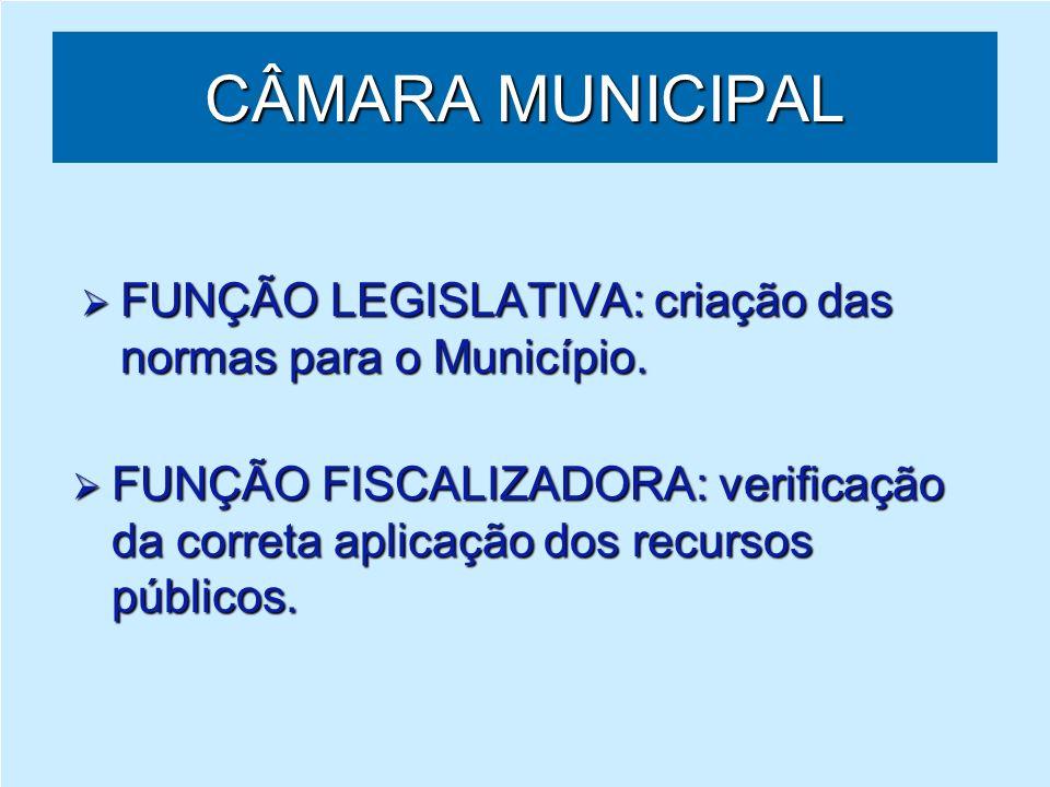 DIRETORIA DO LEGISLATIVO – DIRLEG ATRIBUIÇÕES Na função legislativa: controla e orienta o processo legislativo, desde sua iniciação até o ato final.
