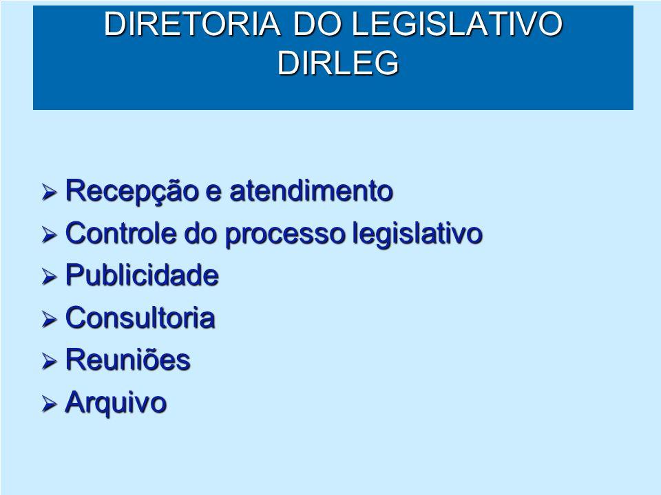 PROCESSO LEGISLATIVO Processo legislativo: processo é a sequência de um conjunto de atos, de tal forma que cada ato venha no seu devido tempo até a conclusão desejada.