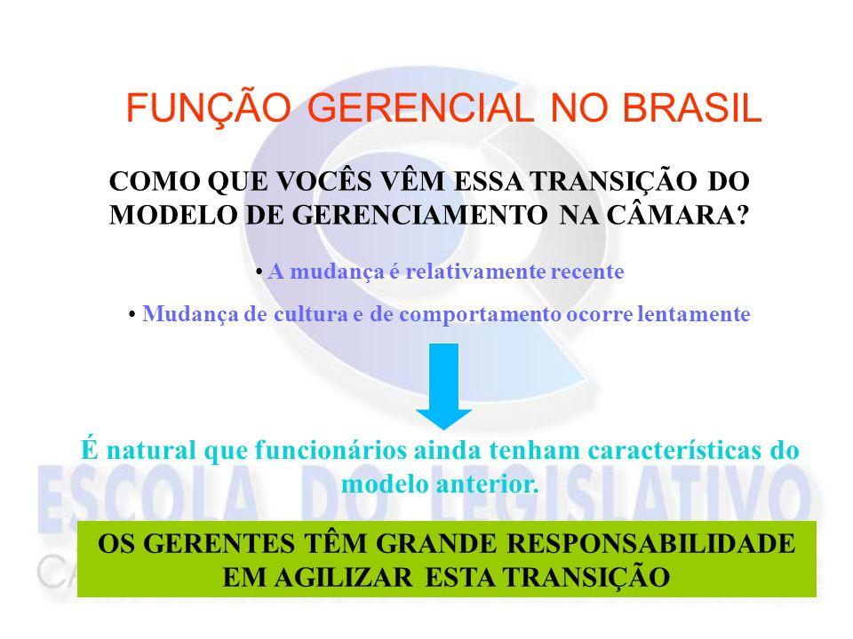 FUNÇÃO GERENCIAL NO BRASIL COMO QUE VOCÊS VÊM ESSA TRANSIÇÃO DO MODELO DE GERENCIAMENTO NA CÂMARA? A mudança é relativamente recente Mudança de cultur