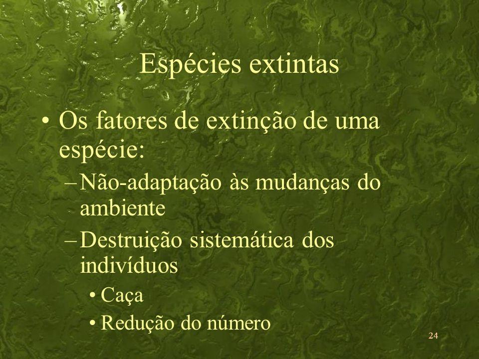 24 Espécies extintas Os fatores de extinção de uma espécie: –Não-adaptação às mudanças do ambiente –Destruição sistemática dos indivíduos Caça Redução