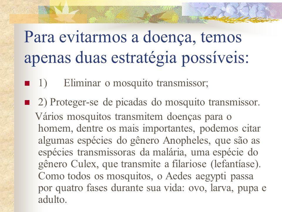 Para evitarmos a doença, temos apenas duas estratégia possíveis: 1) Eliminar o mosquito transmissor; 2) Proteger-se de picadas do mosquito transmissor