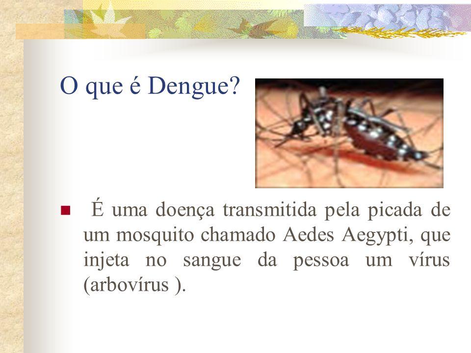 O que é Dengue? É uma doença transmitida pela picada de um mosquito chamado Aedes Aegypti, que injeta no sangue da pessoa um vírus (arbovírus ).
