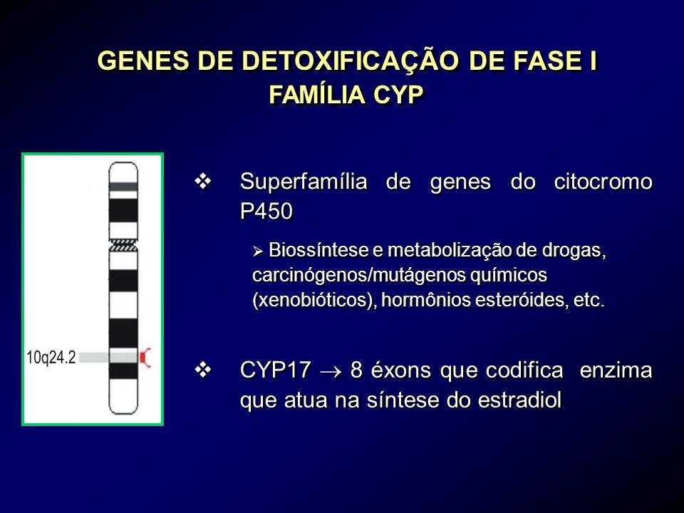 GENES DE DETOXIFICAÇÃO DE FASE I FAMÍLIA CYP vSuperfamília de genes do citocromo P450 Biossíntese e metabolização de drogas, carcinógenos/mutágenos qu