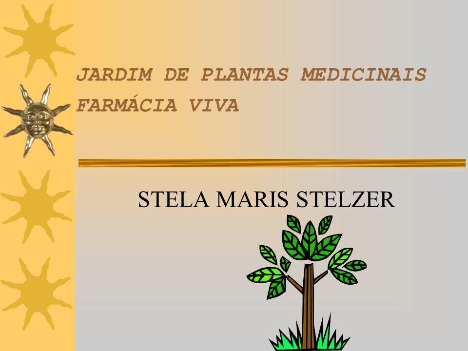 JARDIM DE PLANTAS MEDICINAIS FARMÁCIA VIVA STELA MARIS STELZER
