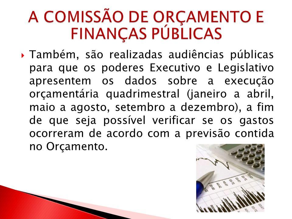 Também, são realizadas audiências públicas para que os poderes Executivo e Legislativo apresentem os dados sobre a execução orçamentária quadrimestral