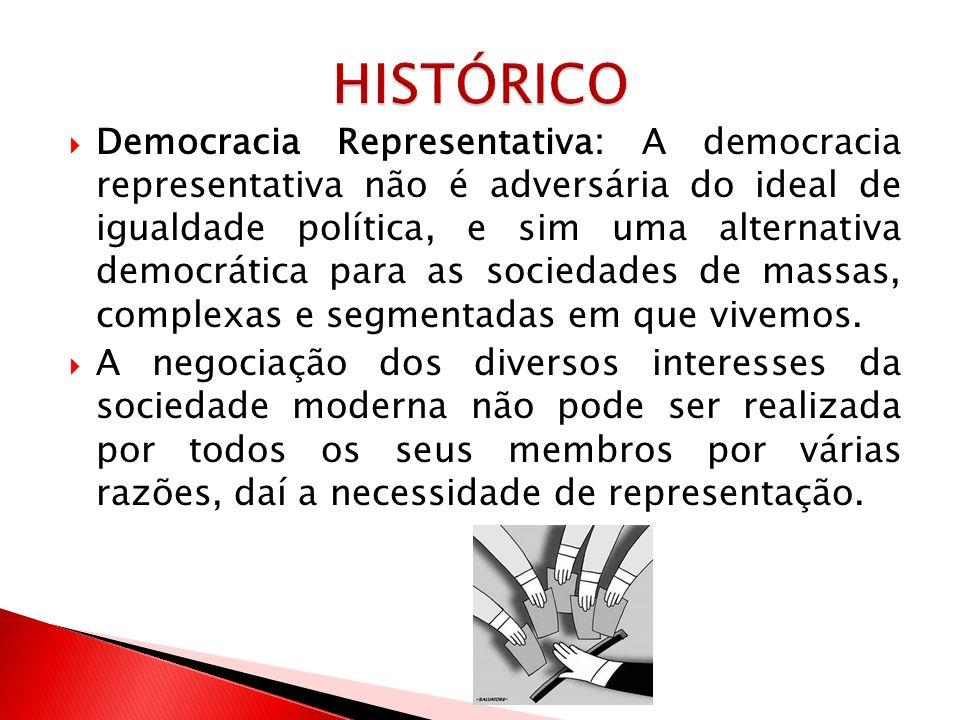 Democracia Representativa: A democracia representativa não é adversária do ideal de igualdade política, e sim uma alternativa democrática para as soci