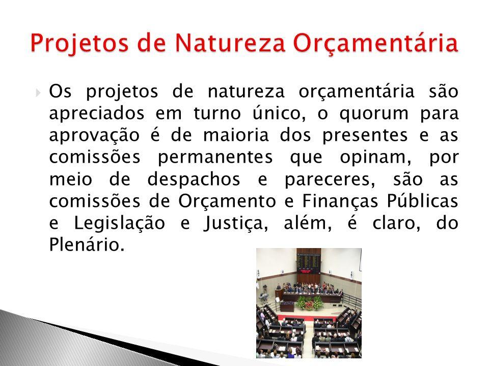 Os projetos de natureza orçamentária são apreciados em turno único, o quorum para aprovação é de maioria dos presentes e as comissões permanentes que