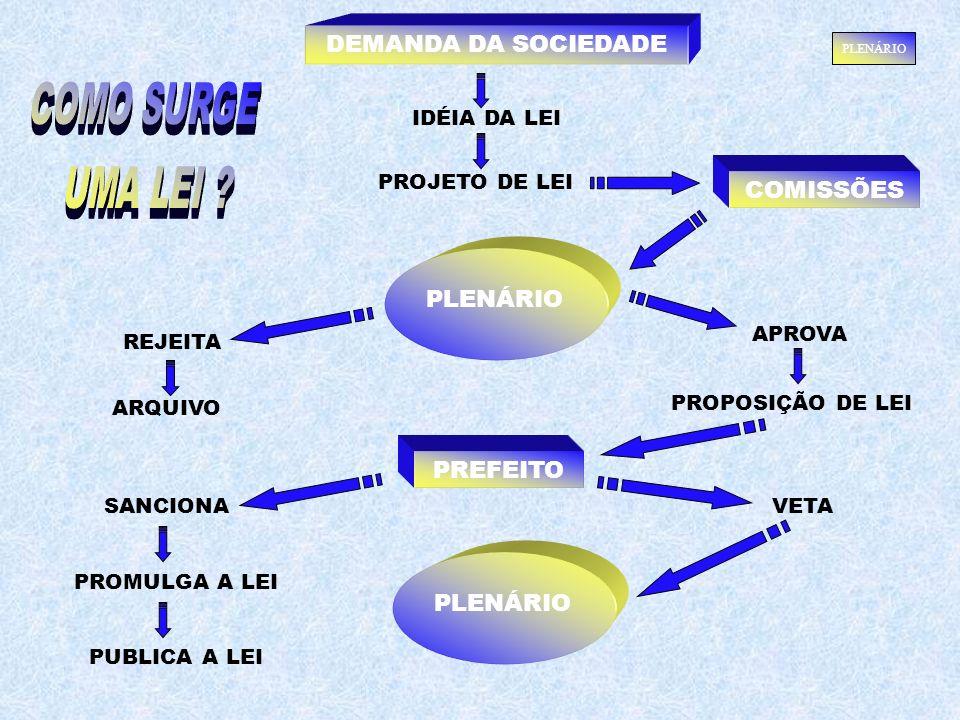 PREFEITO APROVA PROPOSIÇÃO DE LEI REJEITA ARQUIVO VETASANCIONA PROJETO DE LEI IDÉIA DA LEI DEMANDA DA SOCIEDADE PLENÁRIO PROMULGA A LEI PUBLICA A LEI