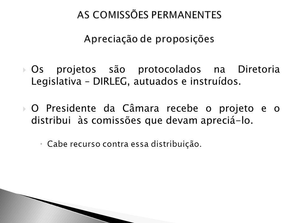 Os projetos são protocolados na Diretoria Legislativa – DIRLEG, autuados e instruídos. O Presidente da Câmara recebe o projeto e o distribui às comiss