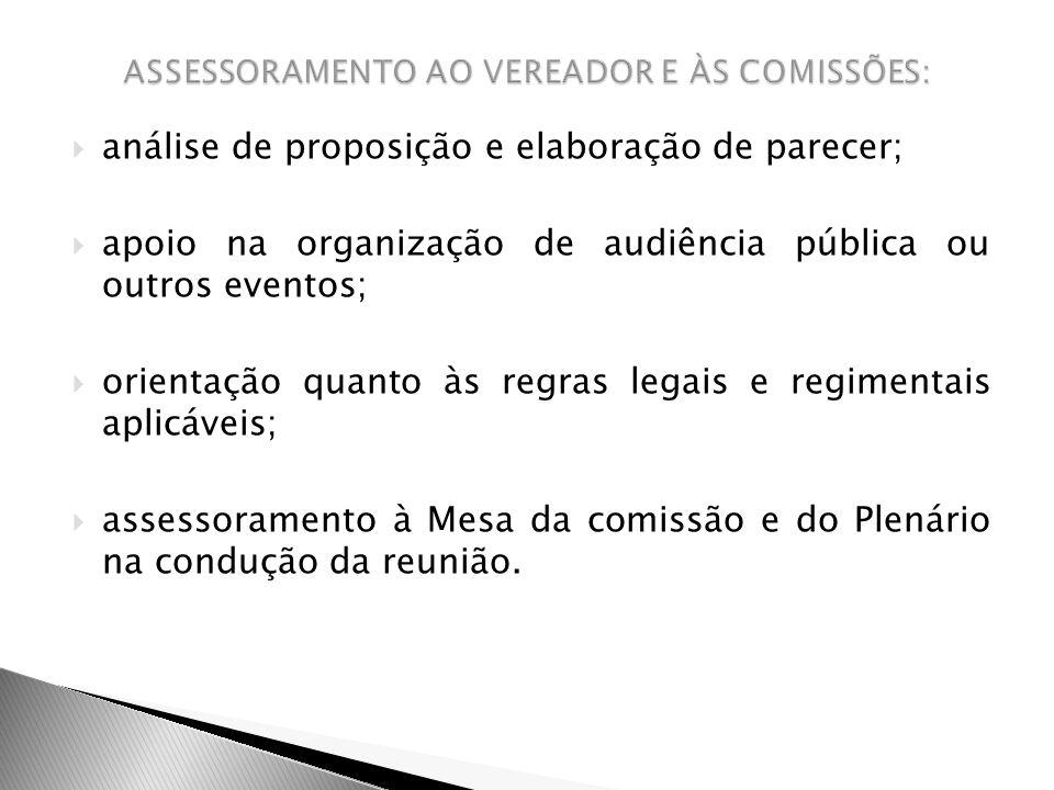 análise de proposição e elaboração de parecer; apoio na organização de audiência pública ou outros eventos; orientação quanto às regras legais e regim