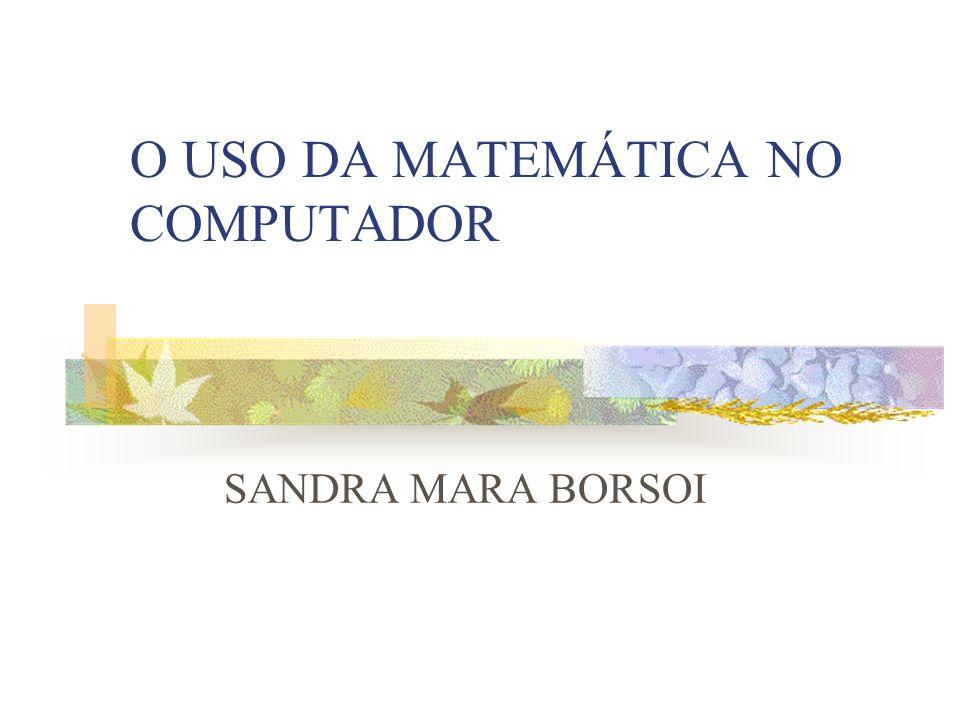 O USO DA MATEMÁTICA NO COMPUTADOR SANDRA MARA BORSOI