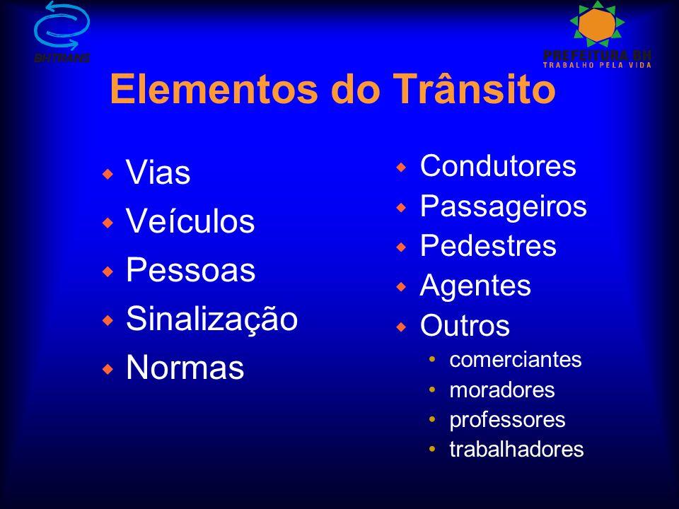 w Vias w Veículos w Pessoas w Sinalização w Normas w Condutores w Passageiros w Pedestres w Agentes w Outros comerciantes moradores professores trabalhadores