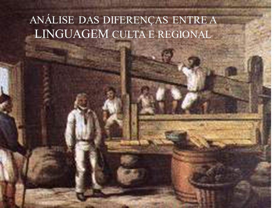 ANÁLISE DAS DIFERENÇAS ENTRE A LINGUAGEM CULTA E REGIONAL
