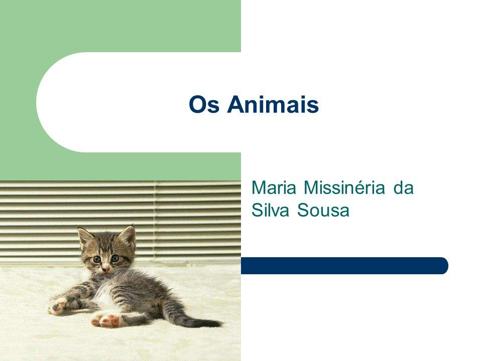 Os Animais Maria Missinéria da Silva Sousa