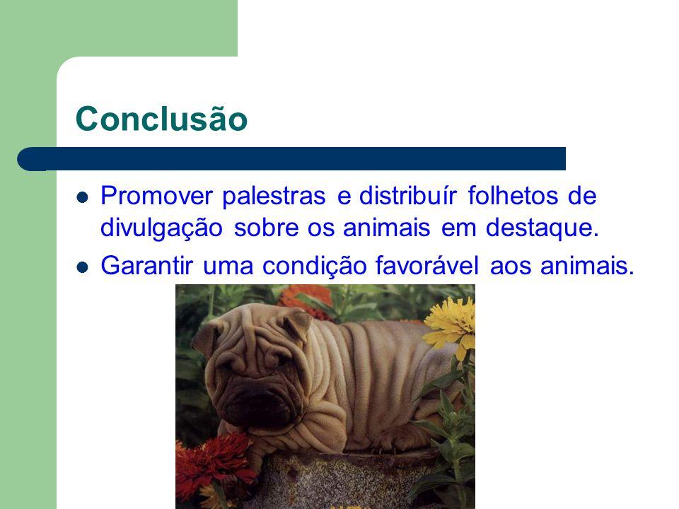 Conclusão Promover palestras e distribuír folhetos de divulgação sobre os animais em destaque. Garantir uma condição favorável aos animais.