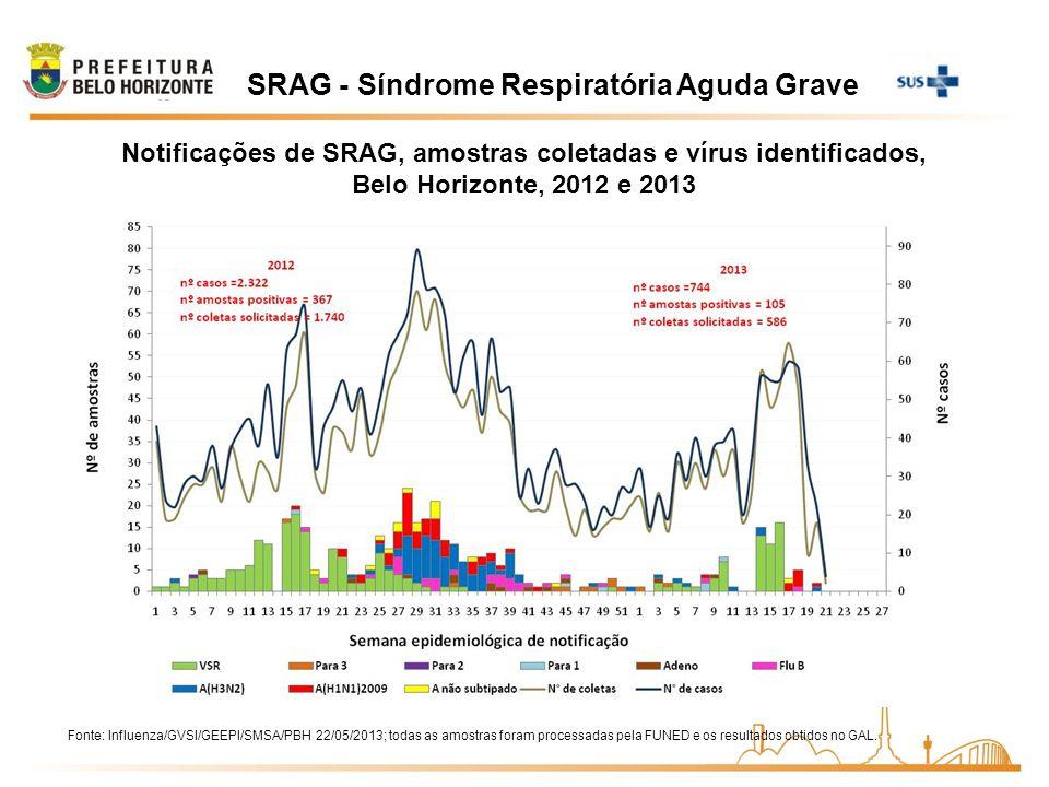 SRAG - Síndrome Respiratória Aguda Grave Notificações de SRAG, amostras coletadas e vírus identificados, Belo Horizonte, 2012 e 2013 Fonte: Influenza/