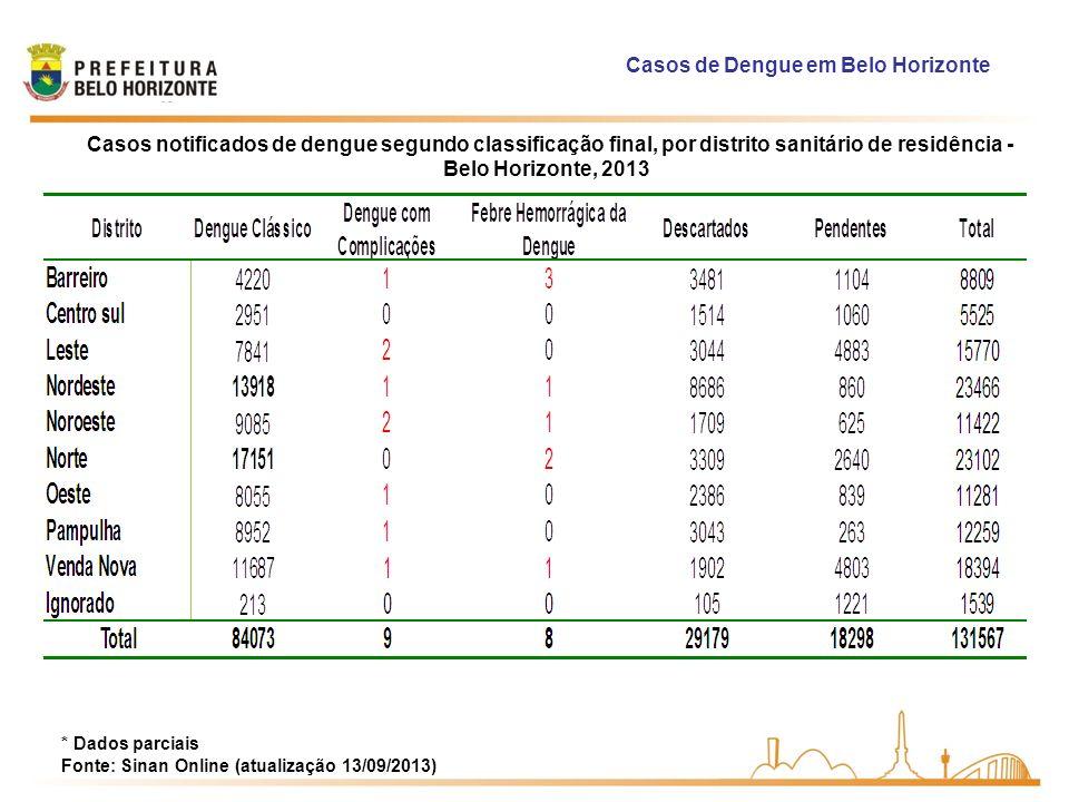 Casos de Dengue em Belo Horizonte * Dados parciais Fonte: Sinan Online (atualização 13/09/2013) Casos notificados de dengue segundo classificação fina