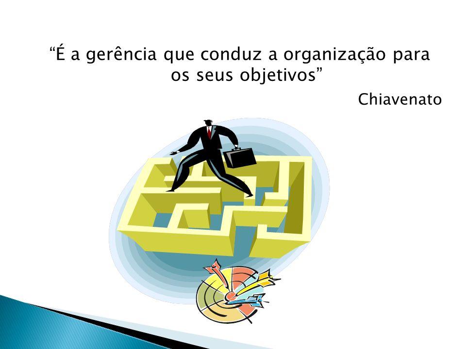 É a gerência que conduz a organização para os seus objetivos Chiavenato