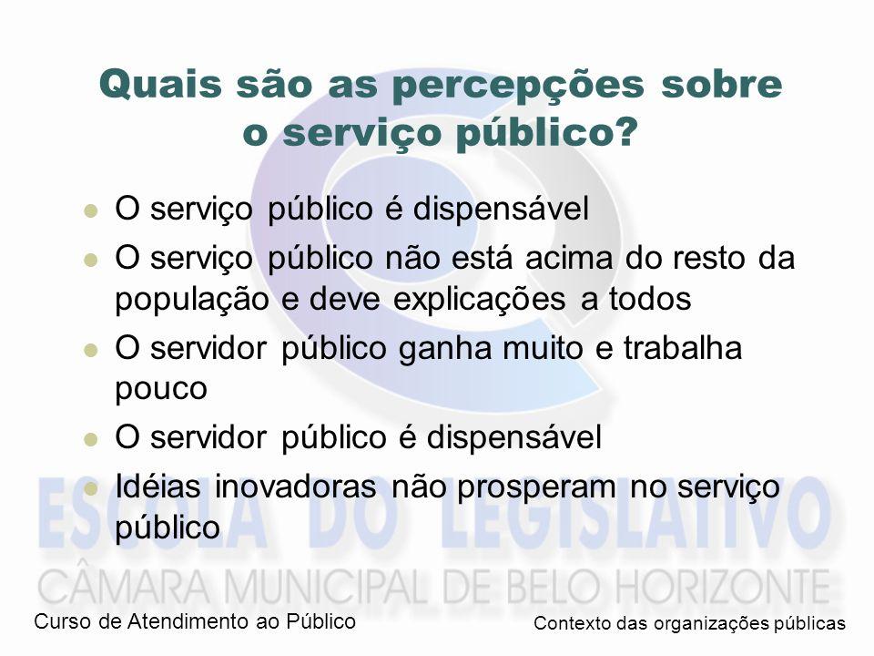 Servir – 1 o sentido: Servir = trabalhar como servo = servil = vil Servidor = serviçal = servil = subserviente Vil = que se compra por baixo preço, que tem pouco valor, insignificante.
