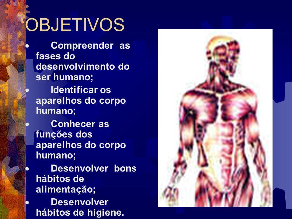 OBJETIVOS Compreender as fases do desenvolvimento do ser humano; Identificar os aparelhos do corpo humano; Conhecer as funções dos aparelhos do corpo humano; Desenvolver bons hábitos de alimentação; Desenvolver hábitos de higiene.