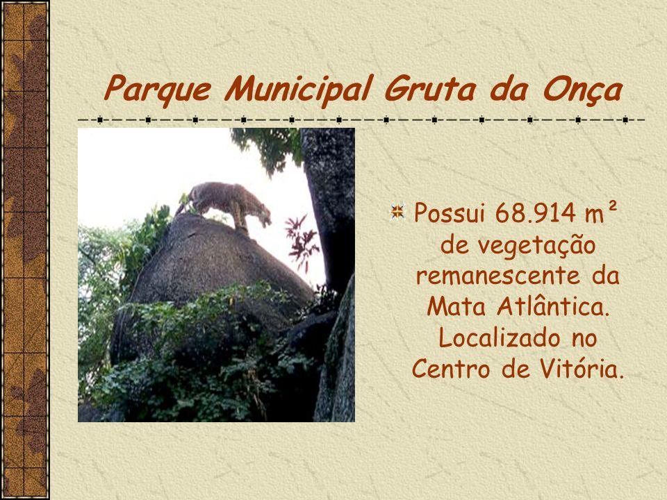 Parque Municipal Gruta da Onça Possui 68.914 m² de vegetação remanescente da Mata Atlântica.