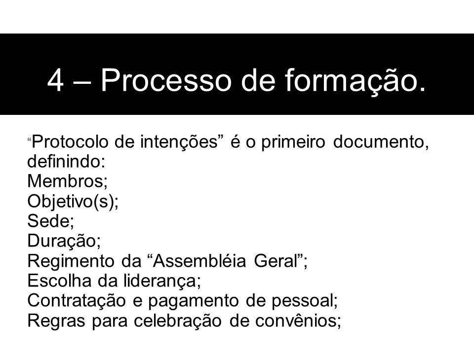 Protocolo de intenções é o primeiro documento, definindo: Membros; Objetivo(s); Sede; Duração; Regimento da Assembléia Geral; Escolha da liderança; Co