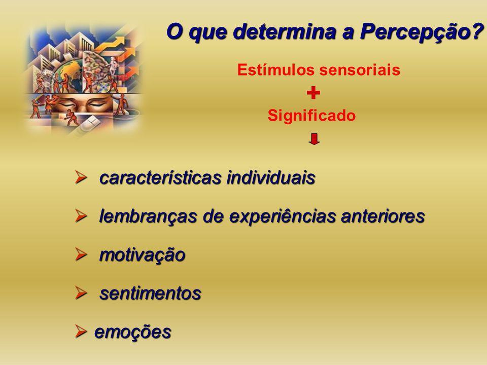 O que determina a Percepção? Estímulos sensoriais características individuais características individuais lembranças de experiências anteriores lembra