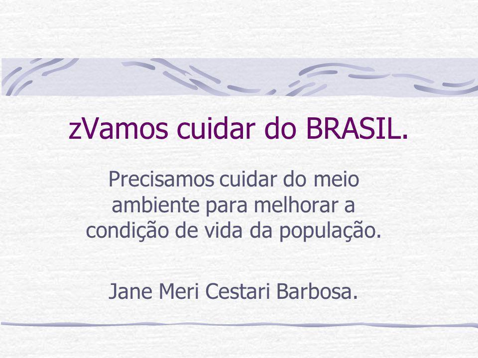 zVamos cuidar do BRASIL. Precisamos cuidar do meio ambiente para melhorar a condição de vida da população. Jane Meri Cestari Barbosa.