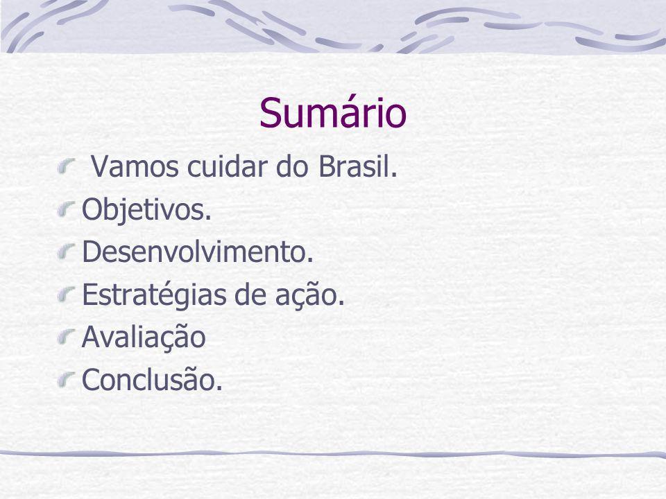 Sumário Vamos cuidar do Brasil. Objetivos. Desenvolvimento. Estratégias de ação. Avaliação Conclusão.
