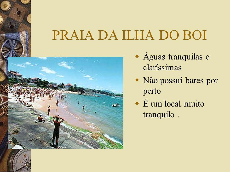 Conclusão As praias que embelezam nosso município precisam ser conhecidas.