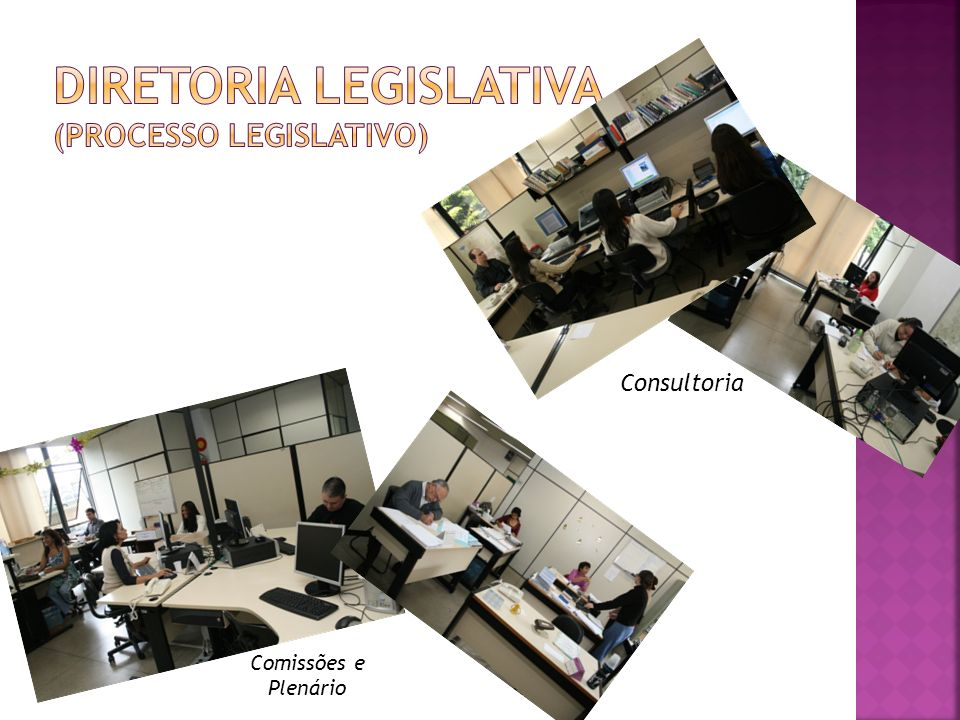 Comissões e Plenário Consultoria