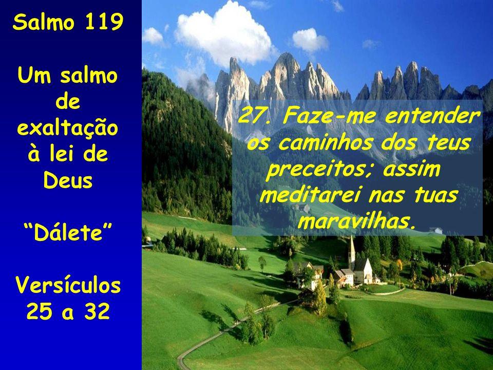 27. Faze-me entender os caminhos dos teus preceitos; assim meditarei nas tuas maravilhas. Salmo 119 Um salmo de exaltação à lei de Deus Dálete Versícu