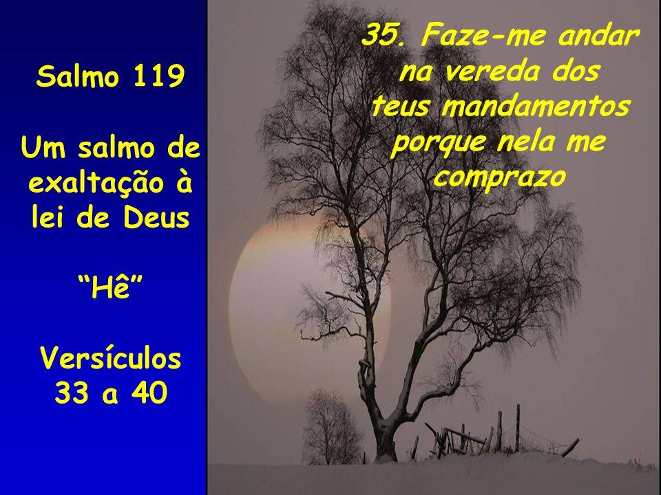 35. Faze-me andar na vereda dos teus mandamentos porque nela me comprazo Salmo 119 Um salmo de exaltação à lei de Deus Hê Versículos 33 a 40