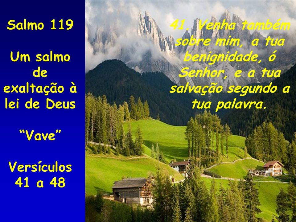 41. Venha também sobre mim, a tua benignidade, ó Senhor, e a tua salvação segundo a tua palavra. Salmo 119 Um salmo de exaltação à lei de Deus Vave Ve